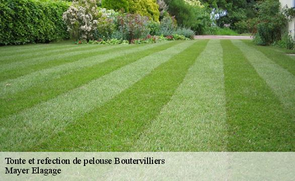 Tonte et refection de pelouse  boutervilliers-91150