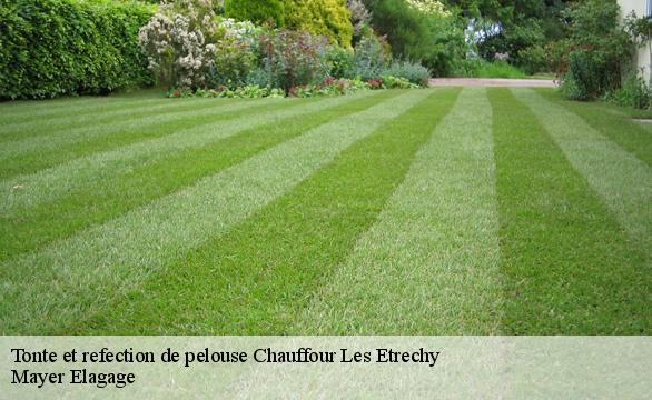 Tonte et refection de pelouse  chauffour-les-etrechy-91580 Mayer Elagage